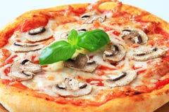 Pizza Fungi Royalty Free Stock Image