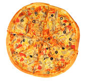 Pizza with fungus Stock Photography