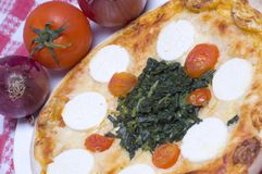 Pizza goat cheese and spinach Stock Image