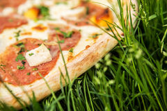 Pizza on grass Stock Photography