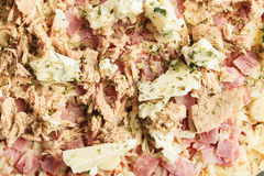 Pizza of ham, tuna and roquefort cheese Royalty Free Stock Photo