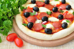 Pizza handmade with Salami, Mozzarella, Olives, Onion and Tomato Sauce Royalty Free Stock Images