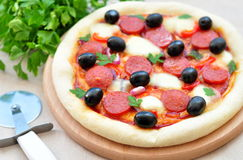 Pizza handmade with Salami, Mozzarella, Olives, Onion and Tomato Sauce Royalty Free Stock Image