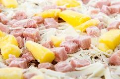 Pizza hawaiana congelata Immagine Stock Libera da Diritti