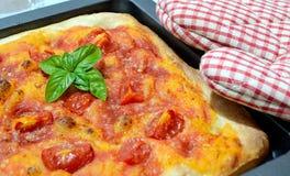 Pizza hecha en casa Imagen de archivo libre de regalías