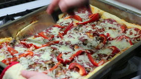 Pizza home in Polish conditions. Royalty Free Stock Photography