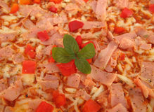 Pizza ingredients cheese, ham, bell pep Royalty Free Stock Photography