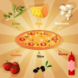 Pizza ingredients poster vector illustration