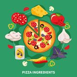Pizza Filler Round Composition. Pizza ingredients round composition with vector images of various pizza filler slices and cooked pepperoni pizza vector Royalty Free Stock Photos
