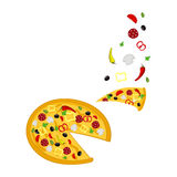 Pizza and ingredients vector illustration  Royalty Free Stock Image