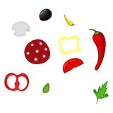 Pizza ingredients vector illustration  Royalty Free Stock Images