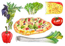 Pizza with ingredients watercolor set. Hand drawn watercolor pizza with ingredients: pepper, basil, dill, cheese, lettuce, tomato and leek vector illustration