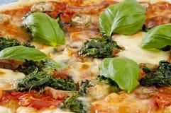 Pizza italiana casalinga Fotografia Stock