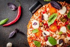 Pizza italiana con los ingredientes fotografía de archivo libre de regalías