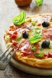 Pizza italiana saporita del salame Fotografia Stock Libera da Diritti