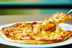 Pizza-Käse würzig Lizenzfreies Stockfoto