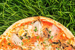 Pizza on lawn Royalty Free Stock Photography