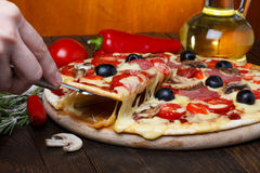 Pizza on lifter with melting cheese Royalty Free Stock Photos