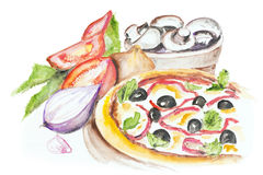 Pizza Margarita isolated. Pizza Margarita with olives, peppers, tomatoes, basil, onion and mushrooms isolated. Handmade watercolor painting illustration on a royalty free illustration