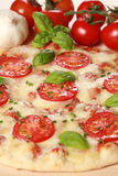 Pizza Margharita. Margharita Pizza with fresh Mozzarella,Tomatoes and Basil stock images