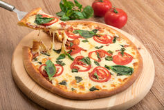 Pizza Margherita con i pomodori, la mozzarella ed il basilico su un fondo di legno, una fetta di pizza con l'allungamento del for Fotografie Stock