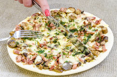 Pizza mat, champinjon, ost, mellanmål, gourmet, bakelse Royaltyfri Bild