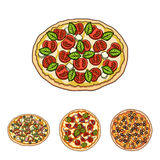 Pizza with meat, cheese and other filling. Different pizza set collection icons in cartoon style vector symbol stock. Illustration Stock Image