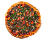 Pizza with meat and green onion Royalty Free Stock Image