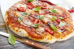 Pizza med hemlagade salami och basilika Royaltyfri Foto