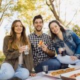 Pizza med vänner arkivfoto