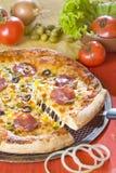 Pizza mit Käse lizenzfreies stockfoto