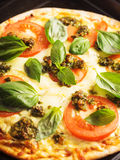 Pizza with tomatoes and basil Royalty Free Stock Photos