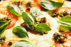 Pizza with tomatoes and basil Royalty Free Stock Photo