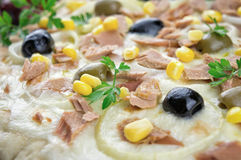 Pizza with Mozzarella, Tuna, Onions , Olives Stock Images