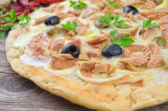 Pizza with Mozzarella, Tuna, Onions and Olives Stock Images