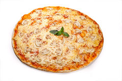 Pizza with mushrooms 2. Pizza with mushrooms, cheese, and tomato Royalty Free Stock Photos