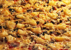 Pizza with mushrooms, cheese and pineapple baked in the oven. Stock Photography