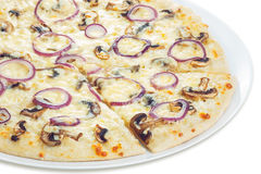 Pizza with mushrooms closeup. Neat, tasty and elegant  pizza cooked from sliced champignons and onion rings Stock Image