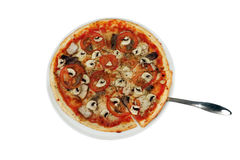 Pizza with mushrooms on a white background. Pizza with meat, mushrooms, tomato and cheese close-up Stock Images
