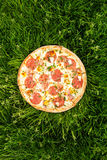 Pizza and Nature Stock Photography