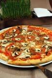 Pizza och en uppsättning av kryddor royaltyfria foton