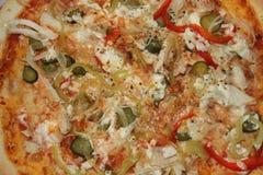 Pizza Ollis Pollo avec le paprika et les saltedcucumbers rouges photos stock