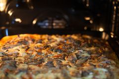 Pizza in the oven stock images