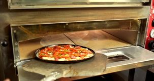 Pizza in the oven stock video footage