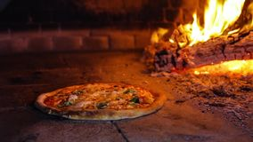 Pizza in the oven stock footage