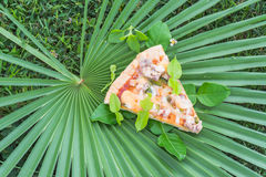 Pizza on palm leaves Stock Images