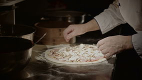 Pizza placing ingredients stock video