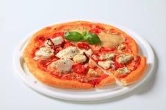 Pizza quattro formaggi Stock Photos