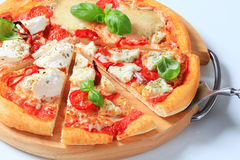 Pizza quattro formaggi Stock Photography
