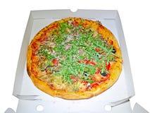 Pizza quattro stagioni Fotografia Stock Libera da Diritti